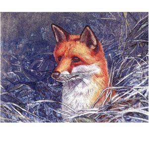 0710 Fox – Heron – Dufex