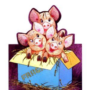 1028 Three Piggies in a Box – Heron – Dufex