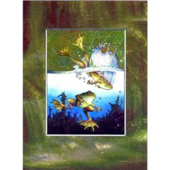 3675 Frog – Water World – by Alan Fairbrass