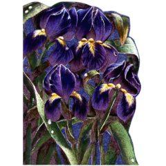4089 Iris – by Heron Dufex