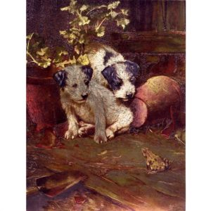 6167 Two Puppies & Frog – print – by F.J. Warren Limited
