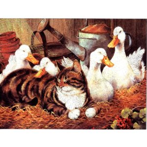 6641 Contentment – Cat Together with Goose – by lynne Jones