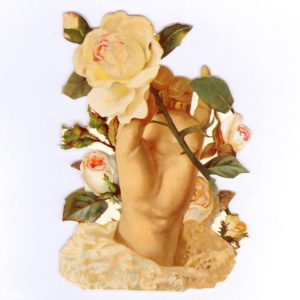 GE45 Hand of Roses @ Brian Paterson