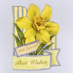GE69 Spring Daffodil