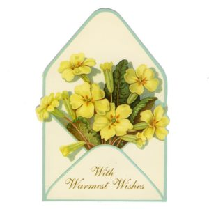 GE74 Yellow Flowers – With Warmest Wishes @ Brian Paterson