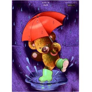 1032 Teddy Splashing in Puddle – Heron – Dufex