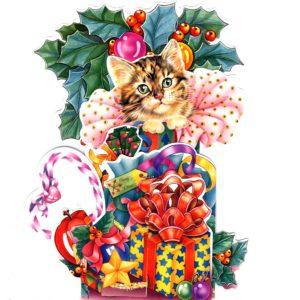 3D752 Kitten & Presents