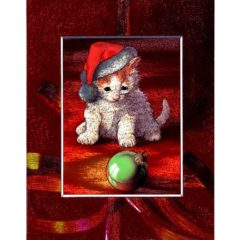 3721 Kitten and Green Bauble – by David Price