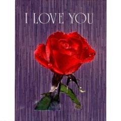 6029 Red Rose – I Love You