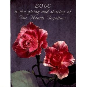 6606 Love is Giving -Two Red Roses – by Scafa Tornabene