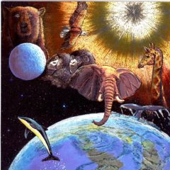 7068HB Planet & Animals of the Wild
