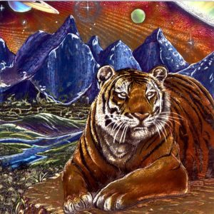 7085 Tiger & Mountains – by L. Gibbins of Advocate
