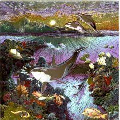 7088 The Living Ocean – by Meiklejohn