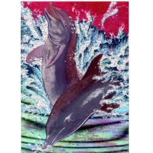 P1328 Wild & Free Dolphins – by Debbie Mackintosh