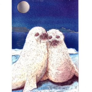 P1339 Widge and Sol the Harp Seals – by Debby Mackintosh