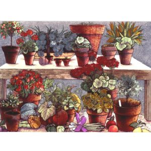 P1340 Country Flowers in Pots – by Tricia Harrison