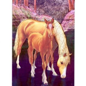 P1361 Horses in Twilight – by Meiklejohn Graphics