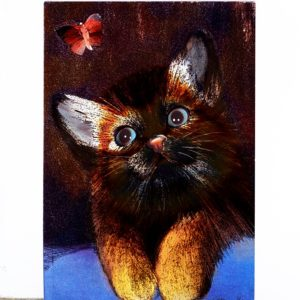 P1367 Kitten looking at Butterfly – Published by F.J. Warren Limited
