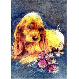 P1368 Puppy/Flowers/Butterfly – Published by F.J. Warren Limited