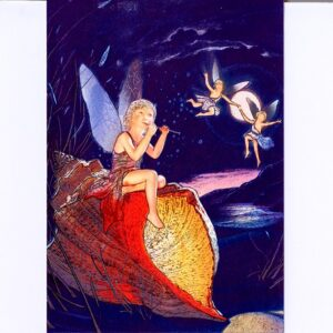 P1373 Shell Fairies – by Meiklejohn Graphics