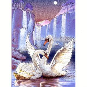 P1374 Swan Dreams – by Meiklejohn Graphics