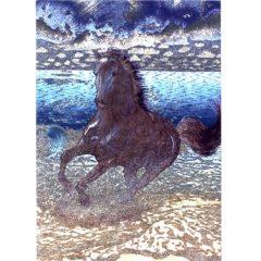 P1387 Black Stallion