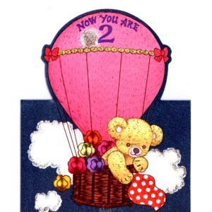 1031 HB2 Teddy in Balloon – Heron – Dufex
