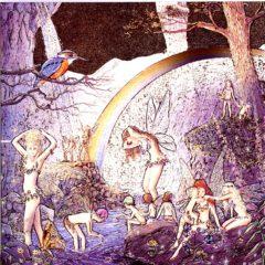 7080 Rainbow Glen Fairies – by Jean & Ron Henry Illustrations