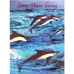 3448 Flying Dolphins – Leaving