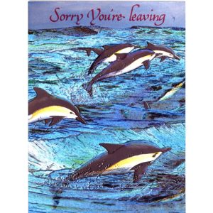 3448 Flying Dolphins – Leaving – Heron Dufex