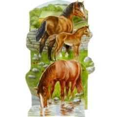AM02-3D Horses & Foal