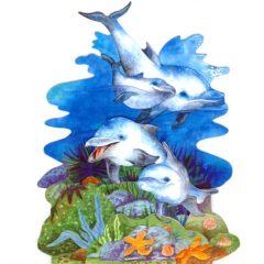 DOL2 The Ocean Deep – Dolphins