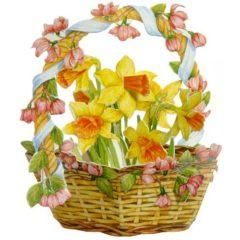 FB9 Daffodil Basket