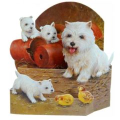 SM3 Dog with Puppies and young Chickens