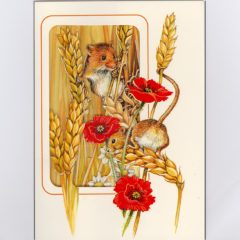 W4 Harvest Mice