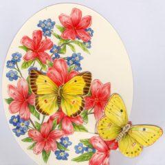 WM2 Butterflies