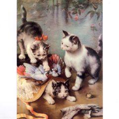 4050 0059 Mischievous Kittens – by C.Reichert