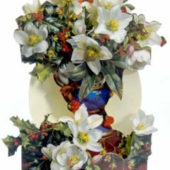 XCAW1 Festive Flora