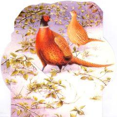 XCRL25 Pheasants – by Simon Mendez