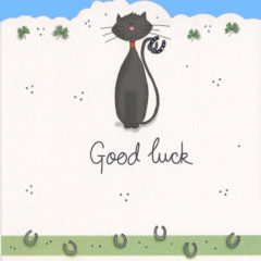 DC13 Black Cat – Good Luck