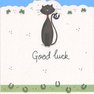 DC13 Good Luck – by Jo Scrivener