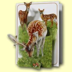 PP213 Deer