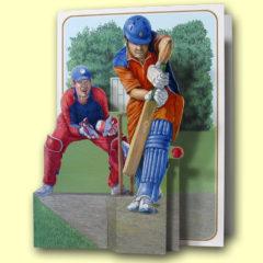 PP214 Cricket