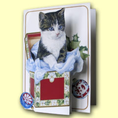 PP403 Christmas – Kitten in Box