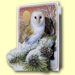 PP406 Barn Owl